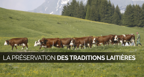 preservation-des-tradictions-laitieres