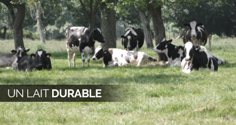 un-lait-durable